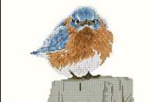 cross stitch / by Cheryl Jordan