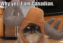 I AM CANADIAN / by FeeFee LaRue
