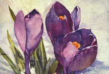Flowers / by Brenda B.