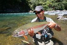 Fishing,  Fish & Water Life / by Geo  Beh