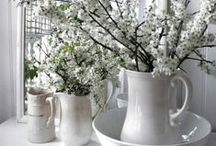WHITE Decorating Stuff / by Evie Dejong
