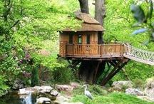 Tree houses, cabins and inground homes / by Dawn Shackelford