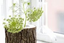 Garden Inspiration / Tips, tricks, DIY, ideas, inspiration, and more - all for the garden! / by Build.com