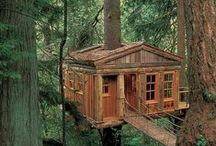 Tree House / by Dawn Rose Granato