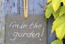 gardening / by Julie Hutchinson