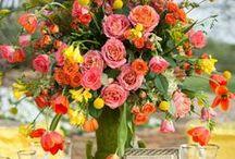 Event Floral / Flora / by kim lukowski