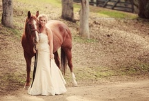 My Someday Wedding / by Robin Carnahan