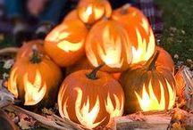 Fall Decorating / by Dana Kelly