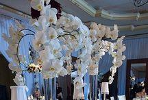 Wedding Ideas / by Heather Gill