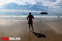 Our Island in the Sun...Phuket :) / by Tiger Muay Thai