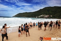 Tiger Beach Training in Phuket / We love hitting the beach to train! Where it's beach bodyfit with Ocean or Muay Thai with the trainers, adding the element of sand and sun makes these intense workouts a blast! www.tigermuaythai.com for more details.  / by Tiger Muay Thai