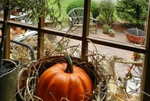 "❥ PUMPKINS  ~ Bibbety~ Bobbety~ BOO ❥ /  ""Five little pumpkins sitting on a gate. The first one said, ""oh my it's getting late."" "" ❥  Pumpkins are my fetish! / by Jennilynn Parks"