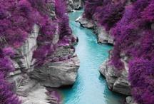 NATURAL SWIMMING POOLS + LAZY RIVER POOL / Unusual, organic and natural shape swimming pools. / by Amber