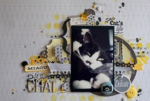 Scrapbooking-Inspirations / by PJ Girl