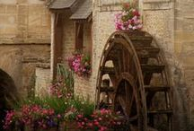 Wind and Watermills / by Tina Ehler