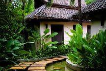 Someday Hawaii Home / by Kristen Velin