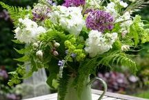 Flowers & decoration  / by Ingrid Goossens