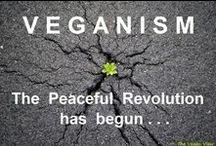vegan / by Bonnie Hughes
