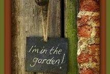 Meet me in the garden! / by Frostine
