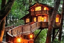 Sheds and Treehouses DIY Doctor / These are sheds, treehouses, Wendyhouses and even fairy houses that we like - send us your inspirations via twitter @diydoctor / by DIY Doctor