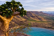 Damaraland / Damaraland is one of the most scenic areas in Namibia, a huge, untamed, ruggedly beautiful region that offers the more traveller a more adventurous challenge.  / by Namibia Tourism Board