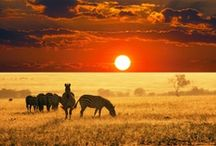 Sunsets & Sunrises  / by Namibia Tourism Board