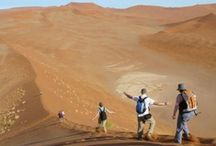 Family Fun / Experience the land of endless horizons with your family! We have  activities for every age and interest that are guaranteed to bring you together on an unforgettable journey.   / by Namibia Tourism Board