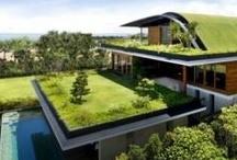 Architecture / by Felix Gonzalez