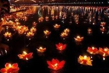 ~Lotus Flower Love~ / The Lotus Flower is My Favorite,  what else can I say / by Lindsay Kmetz