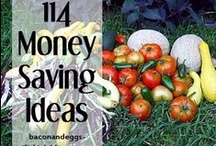 Save Money / by Mary Hentze
