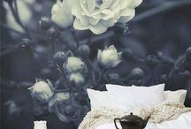 Interior design / by Abby