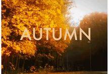Autumn Breeze / by Michelle N