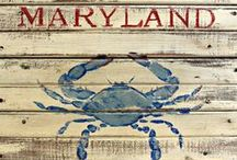 States - Maryland My Maryland / by Dottie Cordwell