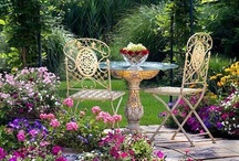 gardens & yards / by Barb Knappen