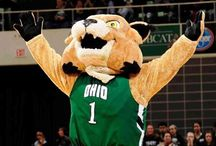 Ohio university ❥ / Go cats  / by Hanna Butler