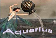 Aquarius/Rat-zodiac / Aquarius, Chinese-Rat, Native Am-Otter, Japanese-Ox, Celtic-Green Dragon, Egyptian-Shu/AmonRa, Mayan-House/Night / by Courtney Anderson