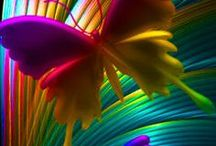 Dazzling Colors / Showing the universe in dazzling colors. / by Bonnie B.