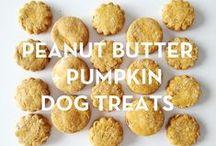 Homemade Doggy treats / by Kimmy