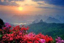 Amazing world/beautiful places / by vanessa galindo