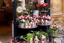 Little Shops, Bars and Cafés / by Marisa Arce