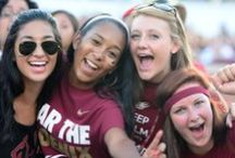 Living the Maroon Life / Highlighting the experiences of Elon University students outside the classroom. / by Elon University