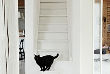 Stairs / by Claudia Zinzan | Father Rabbit Limited