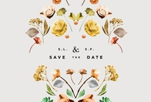 weddings / by Claudia Zinzan | Father Rabbit Limited
