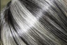 Silver Fox / by Laura Smith