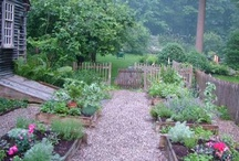 Kitchen Gardens / by Jill Green