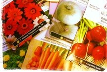 Gifts that Grow! / by Burpee Gardens