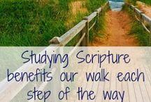 Bible Study / by Susan Wooten