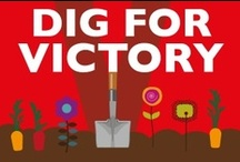 Dig for Victory! / by Alexandra Karina Rodriguez~Castro