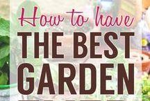 Garden Design: How to... / by Alexandra Karina Rodriguez~Castro