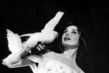 Audrey Hepburn / by Lucinda Corbett